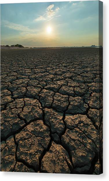 Canvas Print featuring the photograph Thirsty Ground by Davor Zerjav