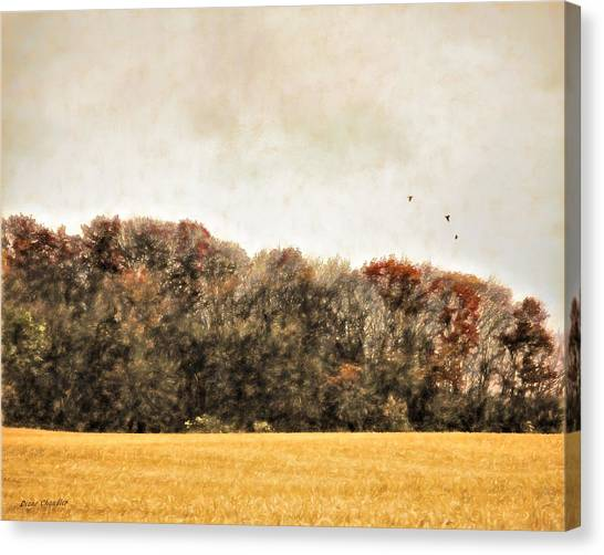 Three Crows And Golden Field Canvas Print