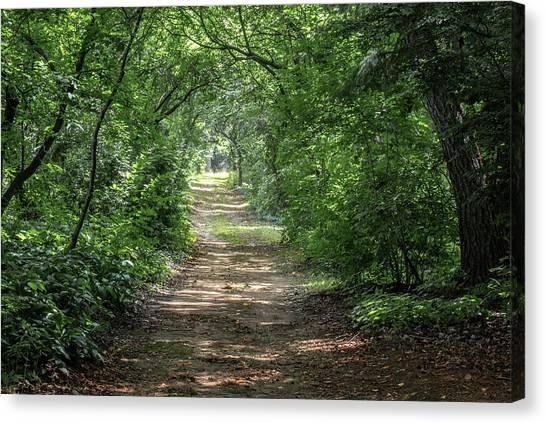 Canvas Print featuring the photograph Through The Forest by Dale Kincaid