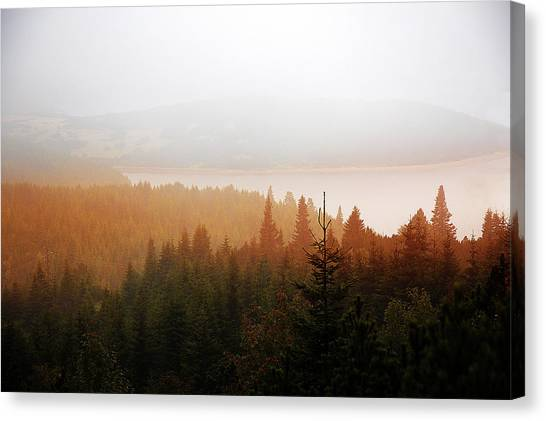 Canvas Print featuring the photograph Through The Mist by Milena Ilieva