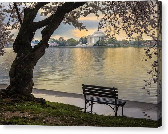 Tidal Basin With Cherry Blossoms And Canvas Print by Drnadig