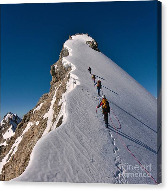 Rope Canvas Print - Tied Climbers Climbing Mountain With by Taras Kushnir
