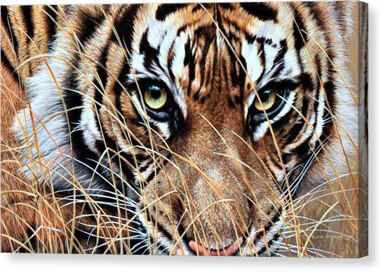 Canvas Print featuring the painting Tiger Eyes By Alan M Hunt by Alan M Hunt