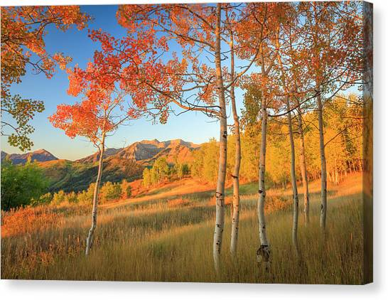 Timp With Fiery Aspens Canvas Print