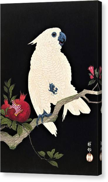 Cockatoo Canvas Print - Top Quality Art - Parrot And Pomegranate by Ohara Koson