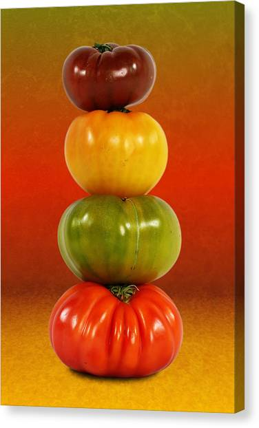 Tower Of Colorful Tomatoes Canvas Print