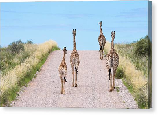 Tower Road Canvas Print