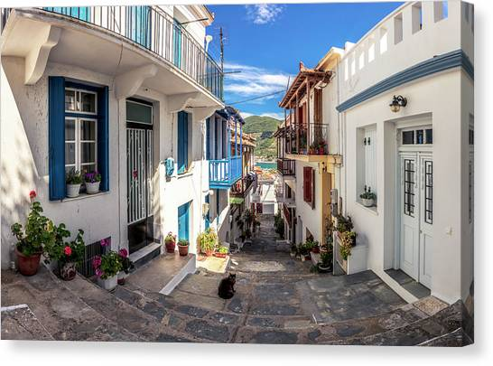 Town Of Skopelos Canvas Print