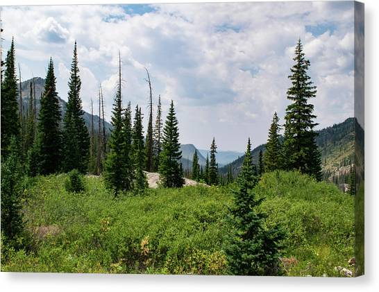 Trail To Gilpin Lake Canvas Print