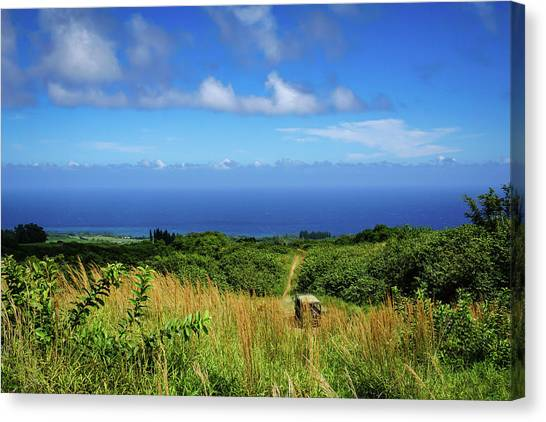 Trail To The Ocean Canvas Print