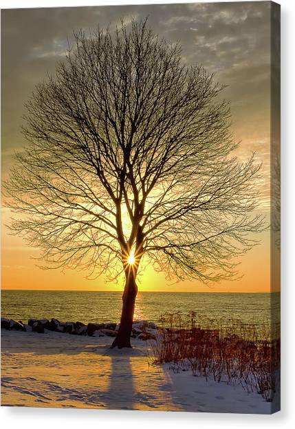 Canvas Print featuring the photograph Tree Framed Sunrise New Hampshire by Nathan Bush
