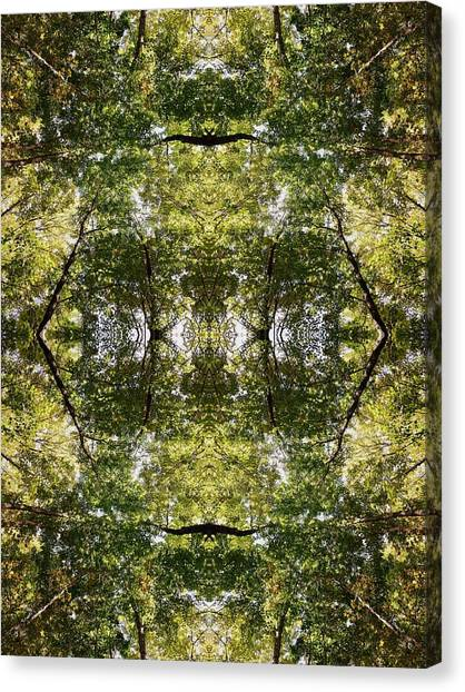 Tree No. 14 Canvas Print