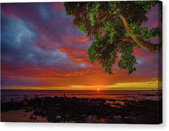 Tree  Sea And Sun Canvas Print