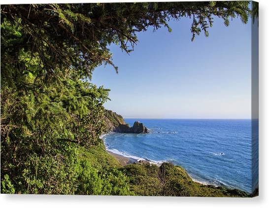 Trees And Ocean Canvas Print