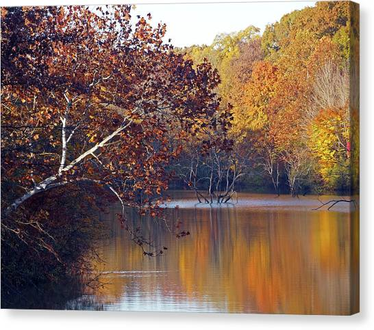 Canvas Print featuring the photograph Trees At The Water's Edge by Mike Murdock