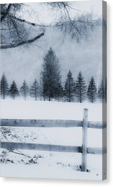 Trees In Frost Valley Canvas Print