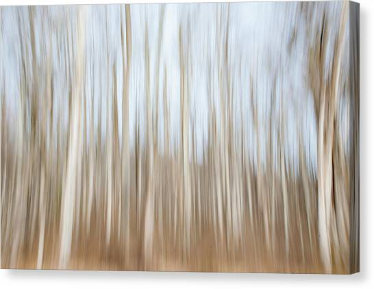 Trees On The Move Canvas Print