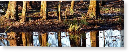 Canvas Print featuring the photograph Trees Reflected At Sunrise by Jerry Sodorff