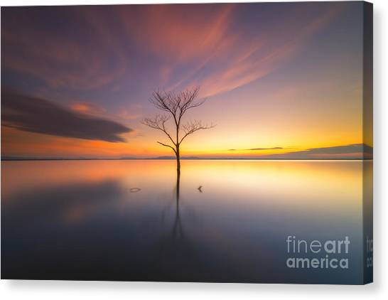 Woodland Canvas Print - Trees Submerged In The Flooded The Time by Worawit j
