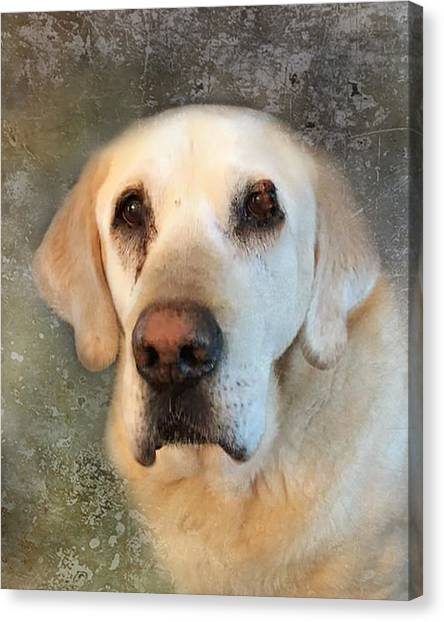 Tribute To Leroy 2 Canvas Print
