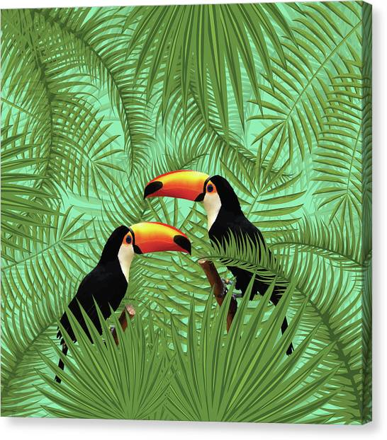 Toucan Canvas Prints Fine Art America