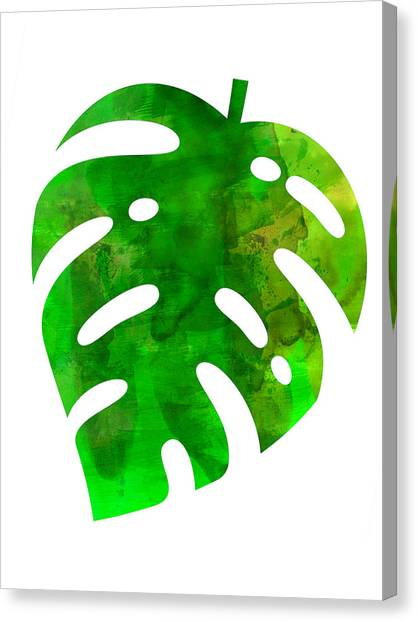 Cacti Canvas Print - Tropical Monstera Leaf by Naxart Studio
