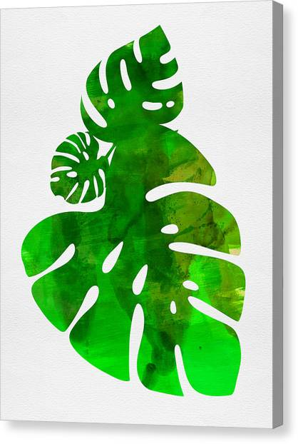 Cacti Canvas Print - Tropical Monstera Leafs by Naxart Studio