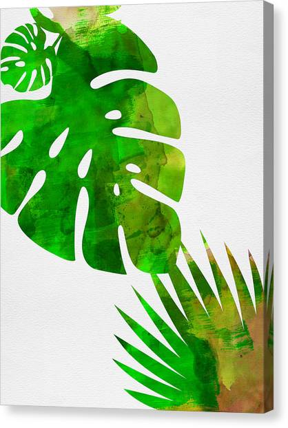Cacti Canvas Print - Tropical Monstera  by Naxart Studio