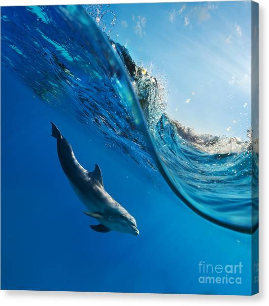 Sea Life Canvas Print - Tropical Seascape With Water Waved by Willyam Bradberry