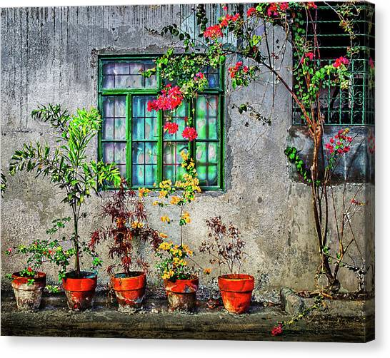 Canvas Print featuring the photograph Tropical Wall by Michael Arend