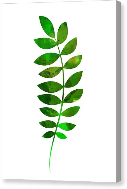 Cacti Canvas Print - Tropical Zamioculcas Leaf  by Naxart Studio