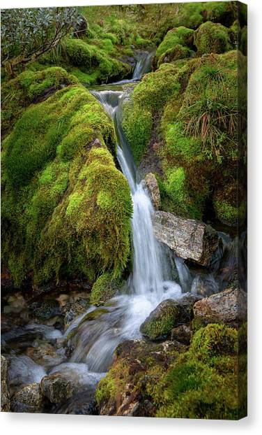 Tufteelvi, Norway Canvas Print