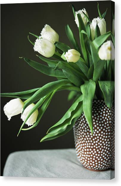 Tulips Falling From Spotted Vase Canvas Print
