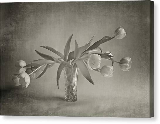 Vase Of Flowers Canvas Print - Tulips In A Vase by Doug Chinnery