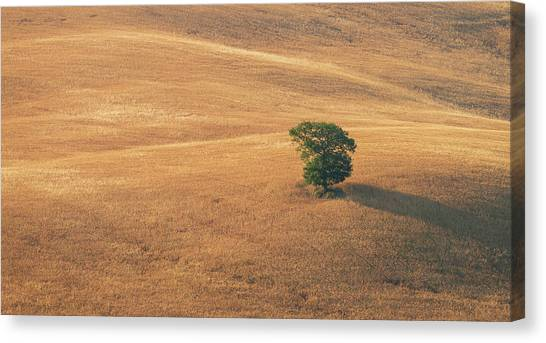 Canvas Print featuring the photograph Tuscany by Mirko Chessari