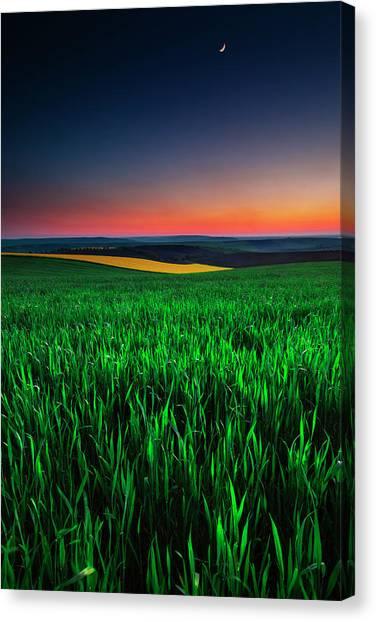 Twilight Fields Canvas Print
