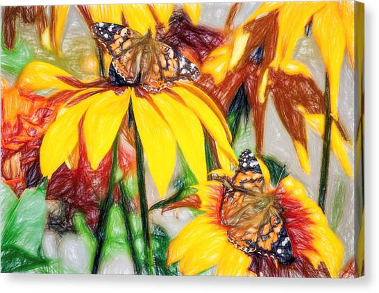Twin Painted Lady Butterflies Pencil Canvas Print