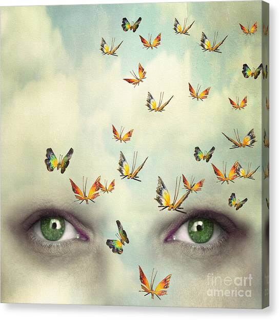 Two Eyes With The Sky And So Many Canvas Print by Valentina Photos