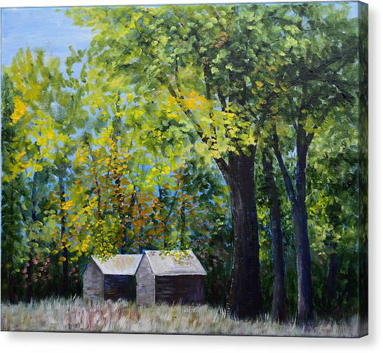Two Sheds In The Trees Canvas Print