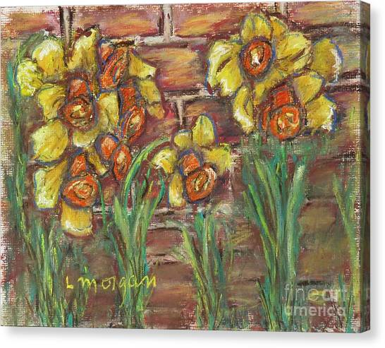 Two Toned Daffodils Canvas Print