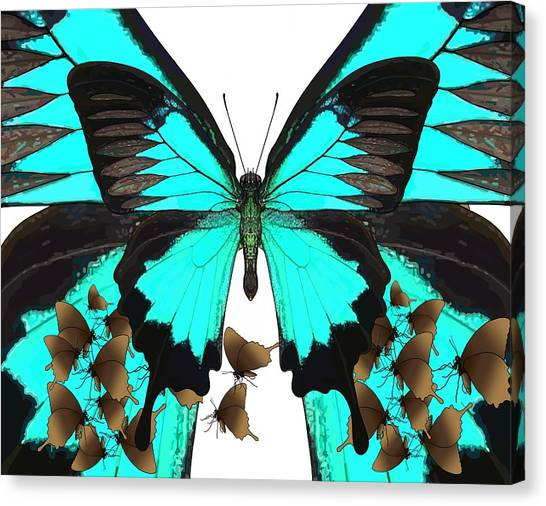 Canvas Print - U Is For Ulysses Butterfly by Joan Stratton