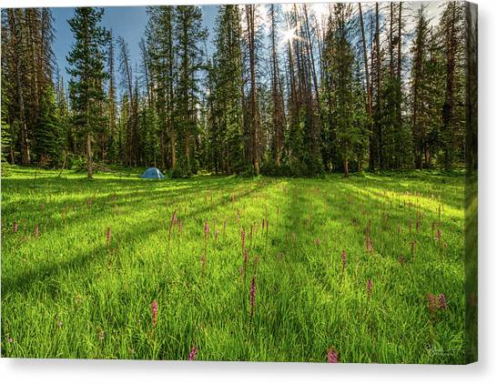 Uinta Canvas Print - Uinta Camping by James Zebrack