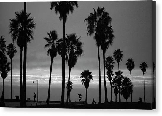 Usa, California, Venice, Venice Beach Canvas Print