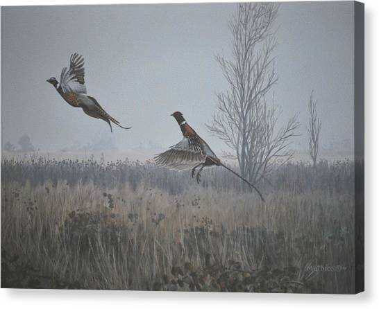 Valley Pheasants Canvas Print