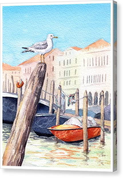 Seagull Canvas Print - Venice - Boats, Water, Buildings And by Le Panda