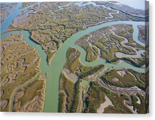 Marsh Grass Canvas Print - View Of Marshland Huelva Province by Peter Adams