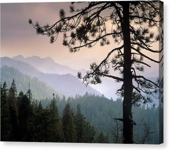 View Over Foothills To The West From Canvas Print by Tim Fitzharris/ Minden Pictures