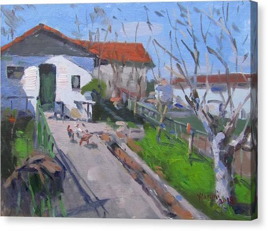 Chickens Canvas Print - Village In Greece by Ylli Haruni