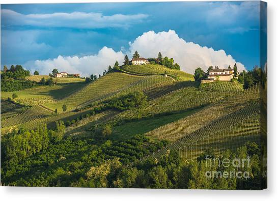 Wine Country Canvas Print - Vineyards Of Langhe, Piedmont, Unesco by Javarman