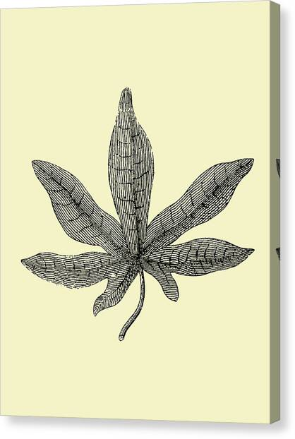 Dahlias Canvas Print - Vintage Leaf by Naxart Studio
